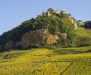 bistrot gourmand bourgogne franche comté